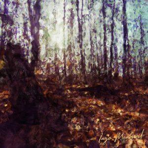 Sonnenschein im Wald Kunstwerk